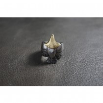 Silver & Gold Indian Eagle Ring TR197